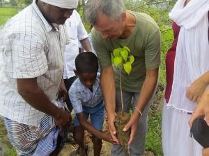 arbre-plante-enfant-vellai-thamarai